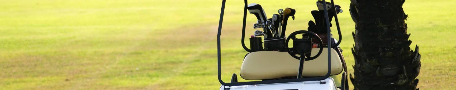 Sentry Longest Golf Cart Batteries