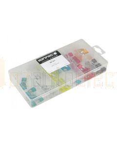 Ionnic ATM Mini Blade Fuse Kit - 100 Pieces