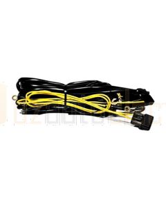 IPF Wiring Harness