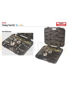 Toledo 304733 Timing Tool Kit - Mitsubishi & Toyota