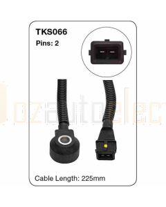 Tridon TKS066 2 Pins Knock Sensor - 225mm